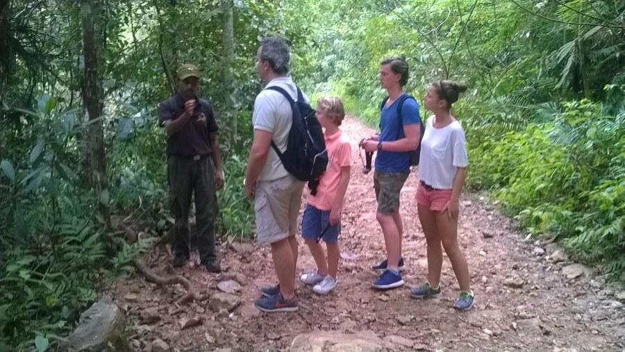 Rain Forest Sri Lanka