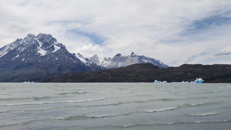 Excelente guía en Torres del Paine