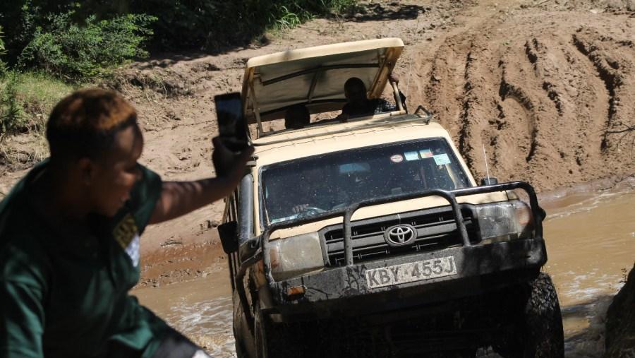 Jeep  Safaris - Masai Mara