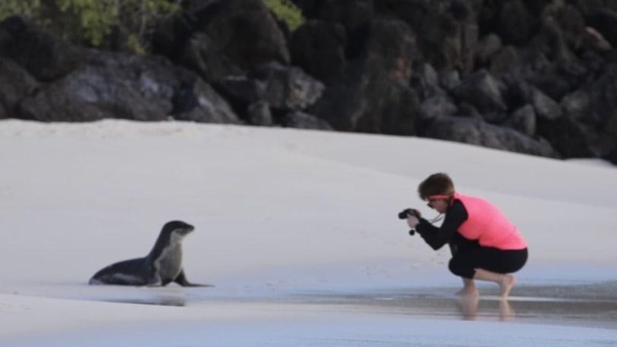 Review of Mariuxi Prieto: Galápagos