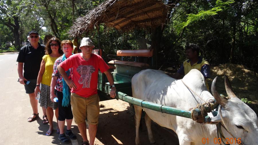 18 days trip to sri lanka