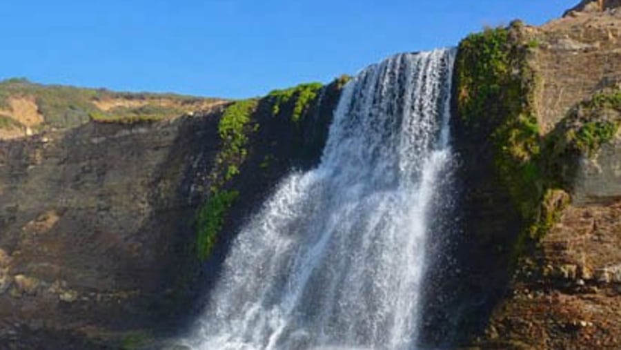 Alamere Falls at Point Reyes
