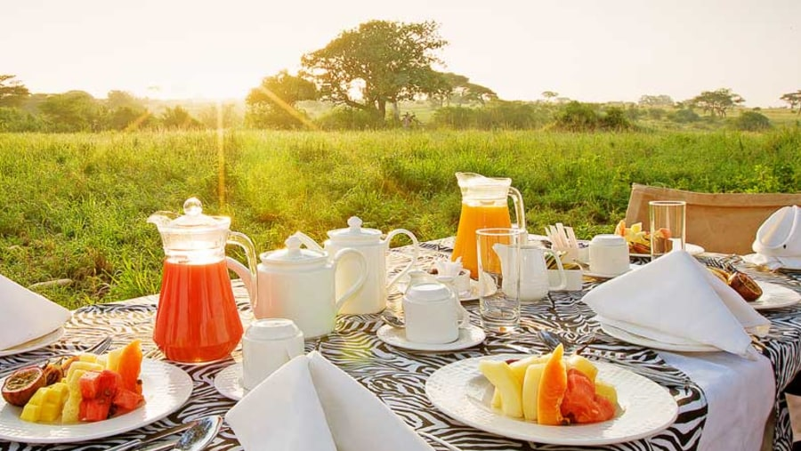Dining in the Masai mara bush