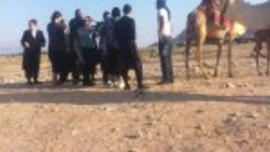 Orthodox Jews and Bedouin Negotiating Price of Camel Ride near Jericho