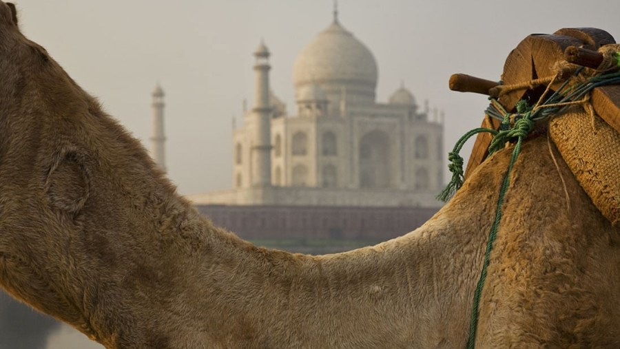 Taj mahal back site
