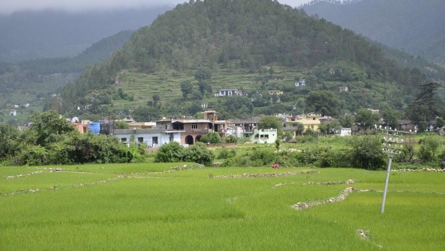 Naresh Sejwal