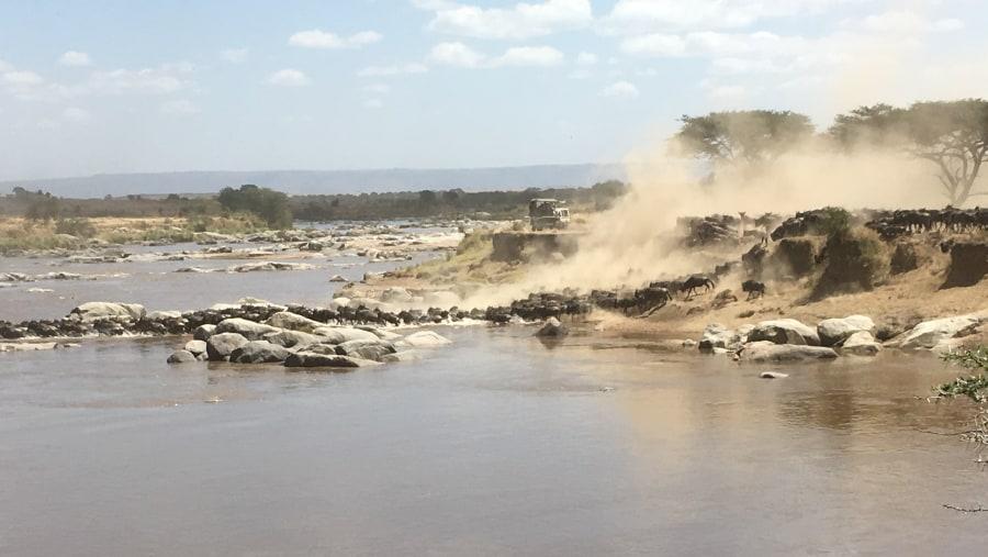 Outstanding guide for Tanzania Safari