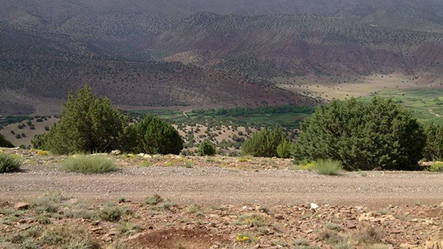 Ait Bougmez valley
