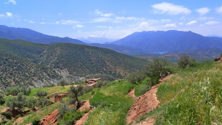"""Fantastic first visit to the Atlas Mountains"""