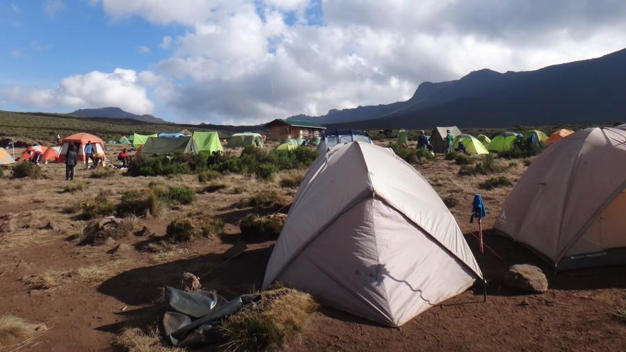 Dennis Shayo Mount Kilimanjaro August 2015