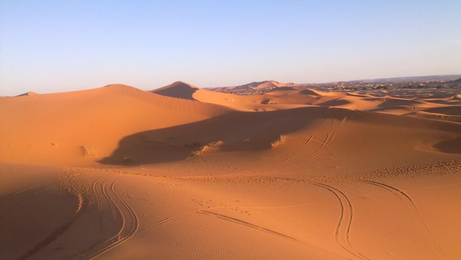Camel trekking in Morocco, Merzouga