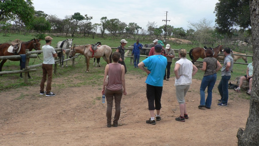 Guests, horse riding