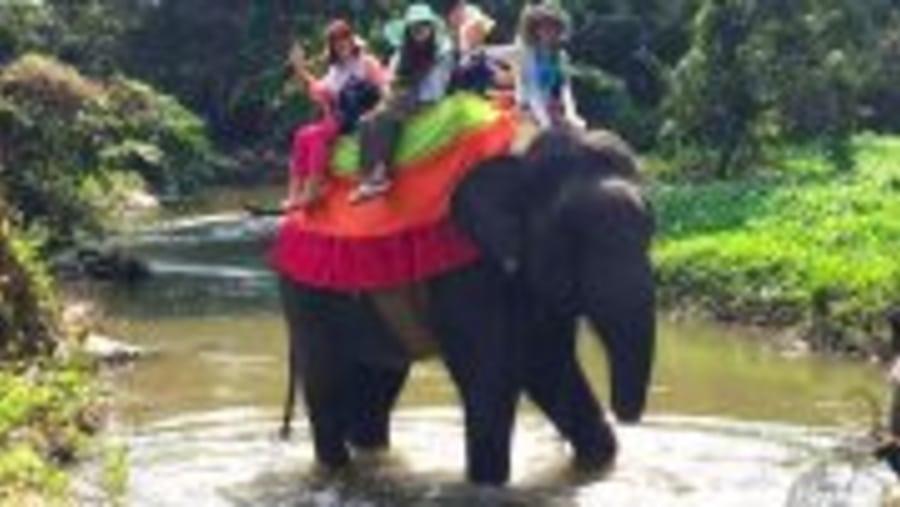 Ceylon Island Travel