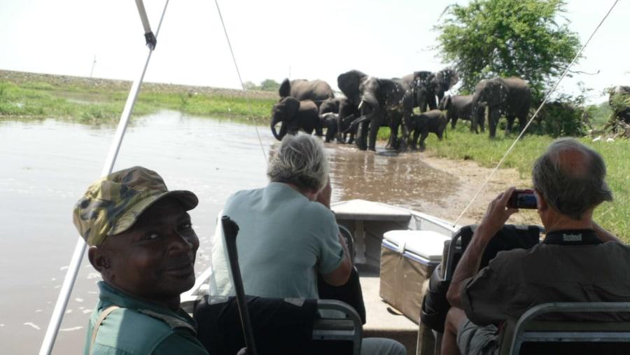One of Boat Safaris