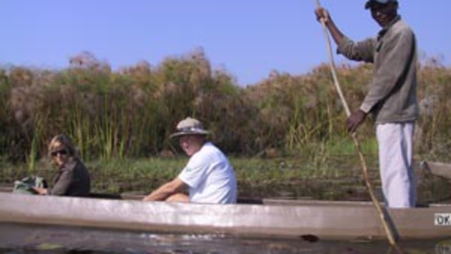 Canoeing in botswana swamps