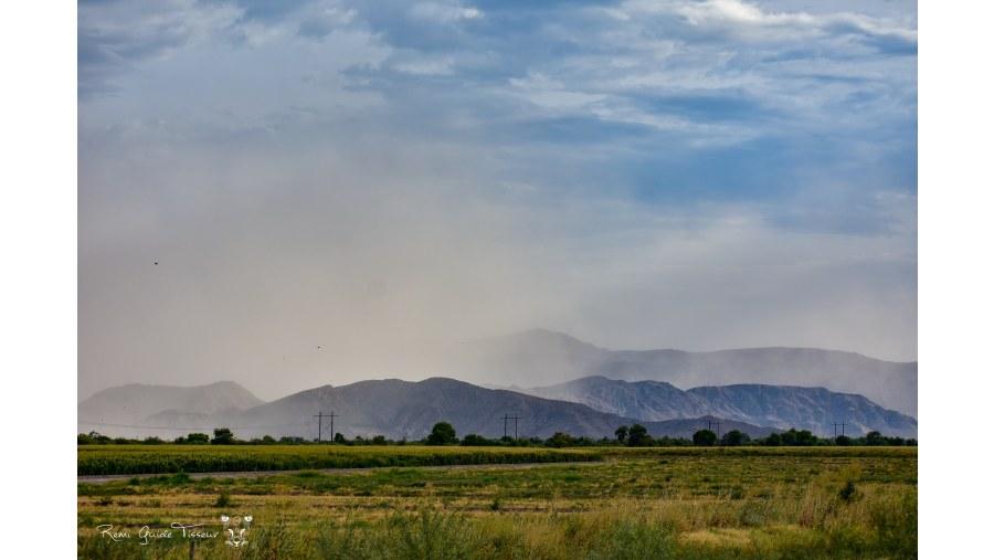 Sandstorm, Coahuila