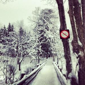 Raquette_parc de la Gatineau3
