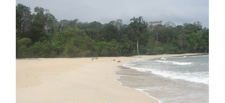 raman-bageecha-beach
