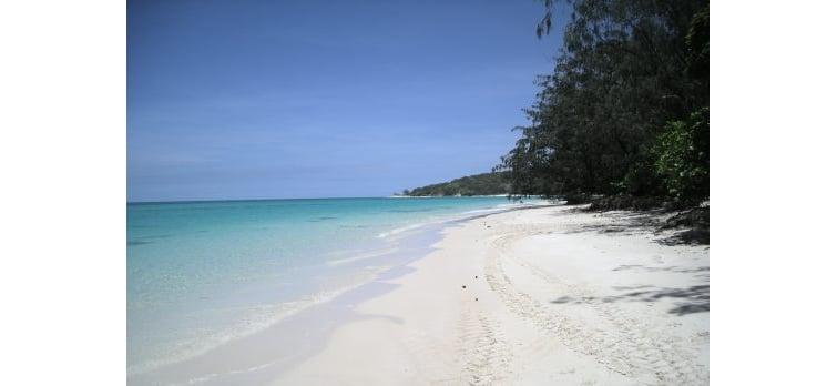 casaurina-beach