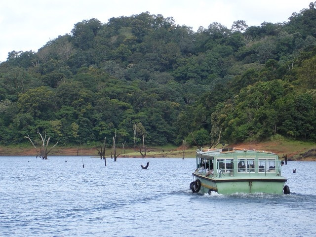 thekkady-lake-boating