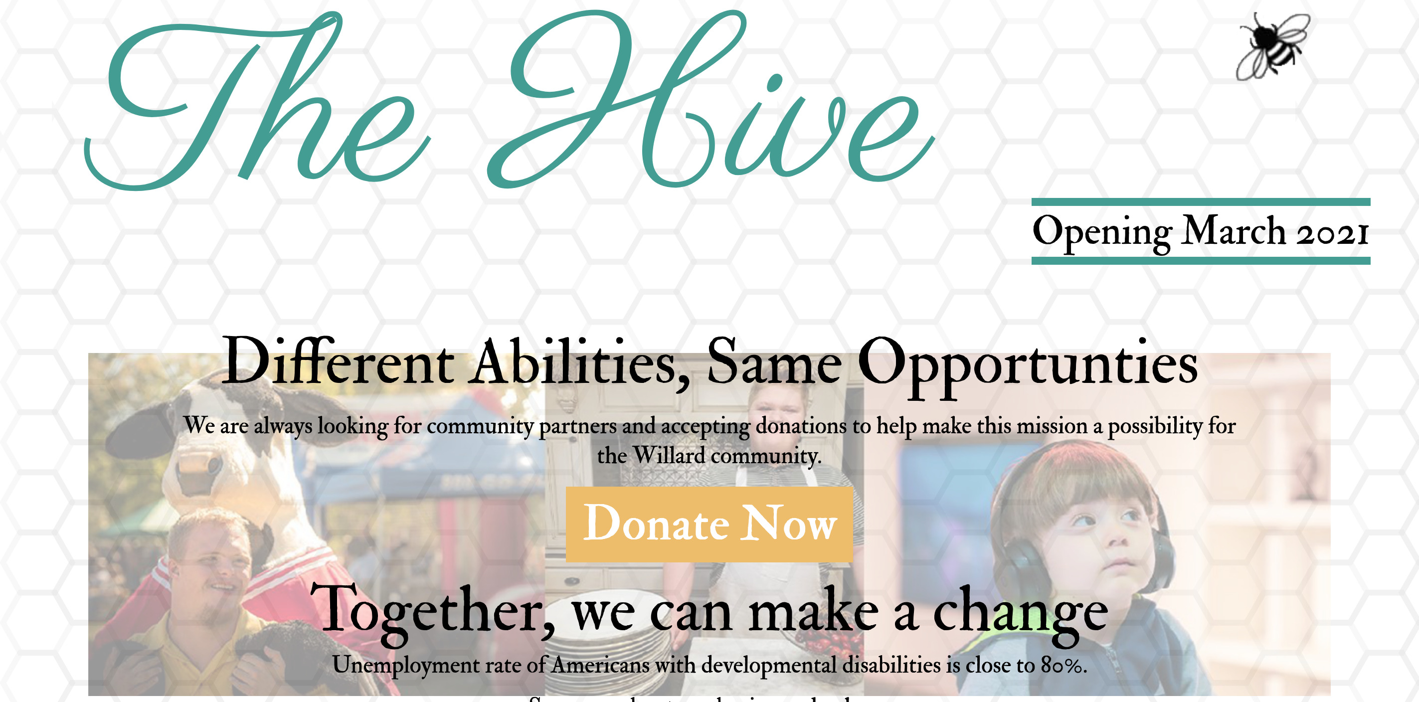 screenshot of hive of the ozarks website