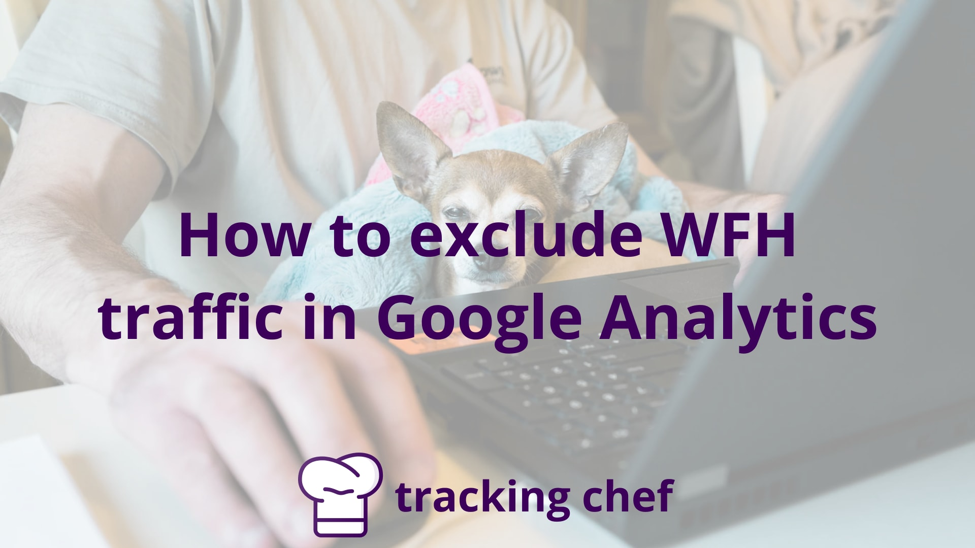 How to exclude WFH traffic in Google Analytics (Expert roundup)