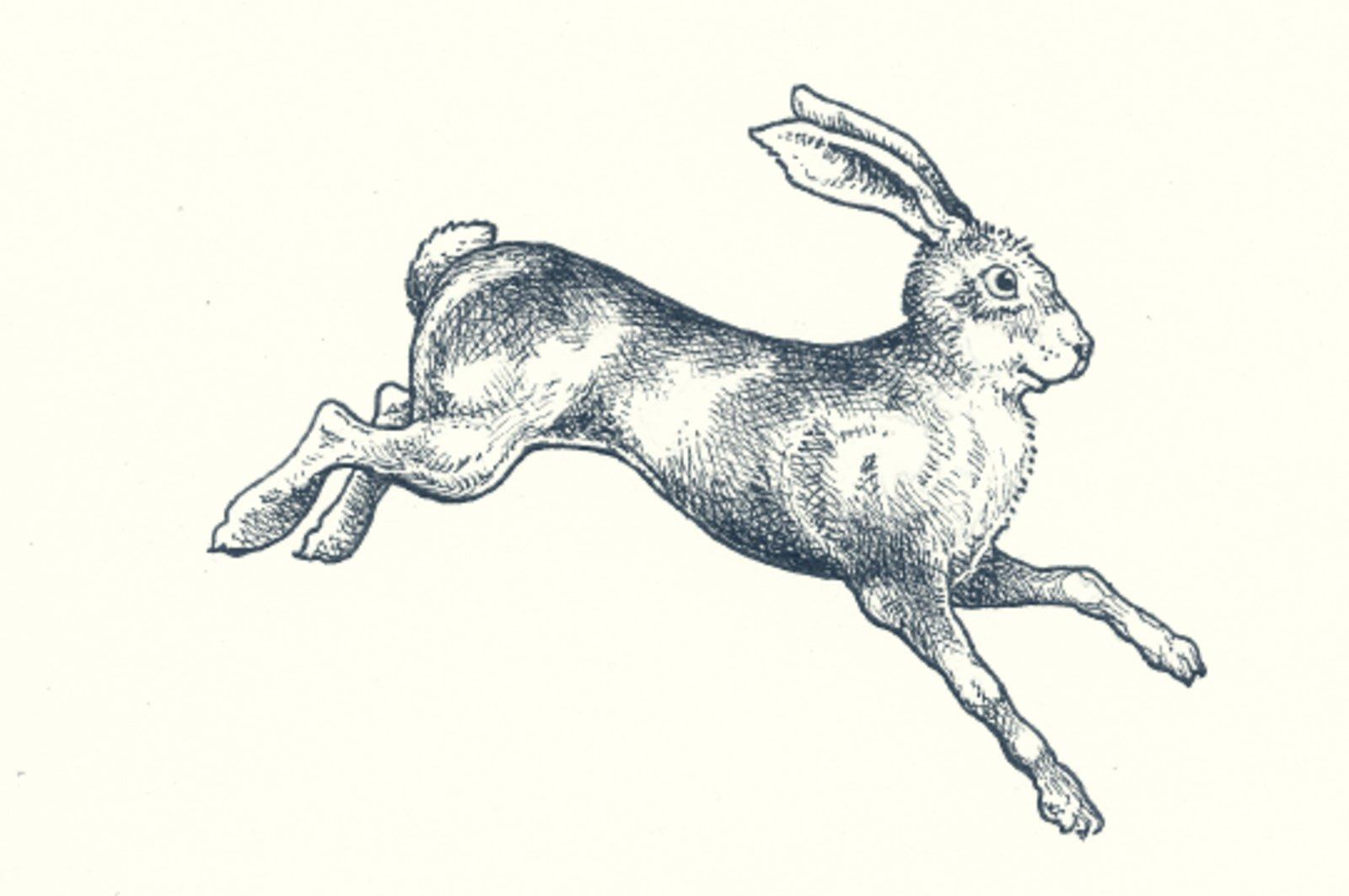 The Tracksmith logo, a hare