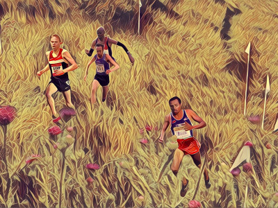 Cross-Country: The Greatest Sport Not in the Olympic Games. Part 1