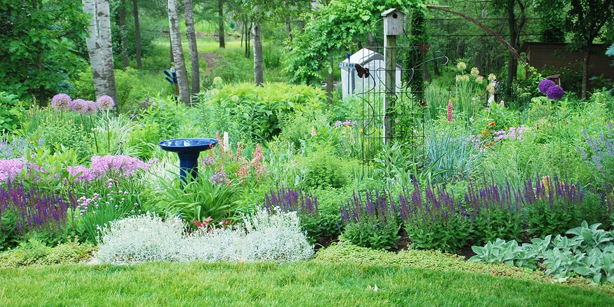 Include habitat features in your garden and landscape that are needed to attract and sustain the wildlife you are trying to attract.