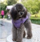 Gebreide kabel trui kleur paars voor de hond