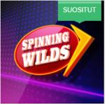 AHTI Games spinning wilds