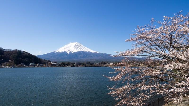 久しぶりに国内旅行!湖山亭うぶやに泊まって富士山を観てきました