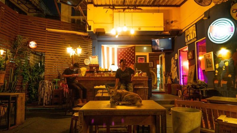 オーナーの事が大好きな猫がいる「Manung Bar」