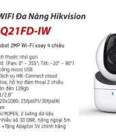 Hikvision-DS-2CV2Q21FD