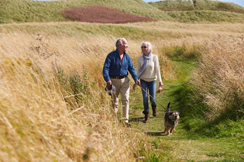 Couple walking outdoors with a dog