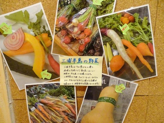 三浦海岸アレーナ 夕食