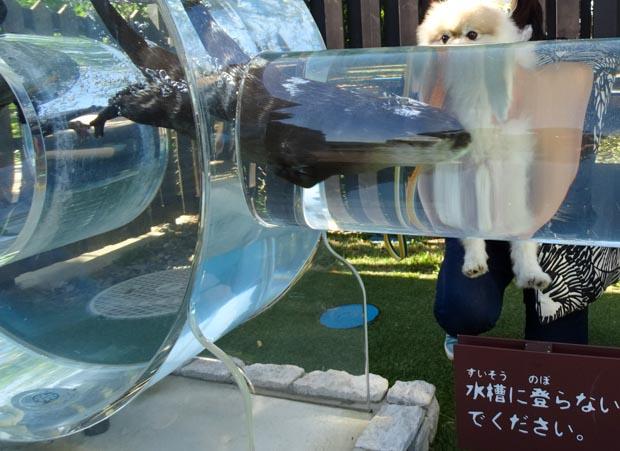 京急油壺マリンパーク