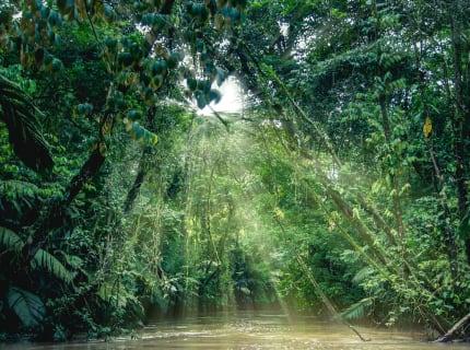 CR.Nationalpark_Tortuguero