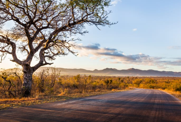 Südafrika.Kruger Nationalpark.Landschaft