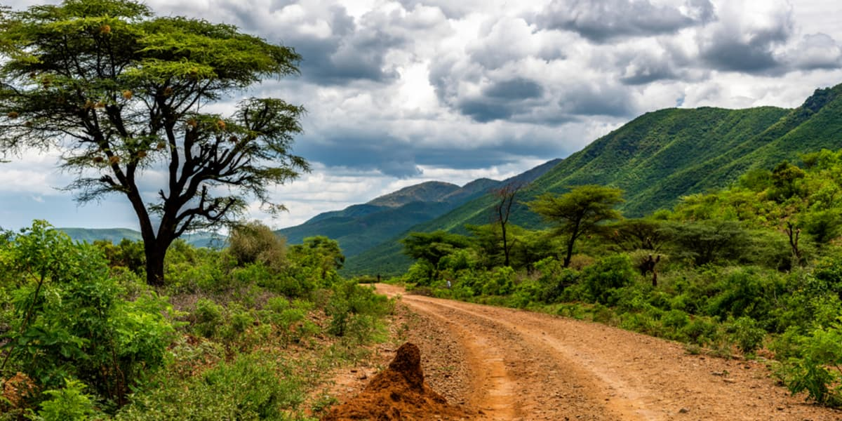 Langweilig wird es bei der spektakulären Natur Afrikas sicherlich nicht.