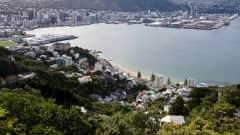 NZ.Wellington_Bucht