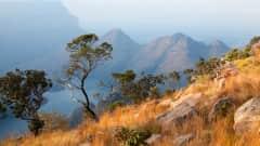 ZA.Blyde River Canyon 6