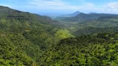 MU.Chamarel-Wasserfälle_Black_River_Gorges_Nationalpark
