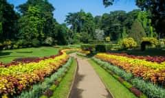 LK_botanicgarden