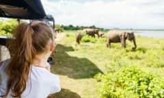 LK.safarigirl