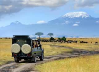 TZA.Serengeti.Safari-Jeep