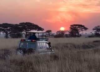 TZ.Serengeti Safari sundown