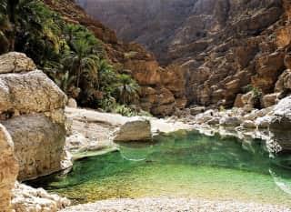 OM.Wadi Shab 1