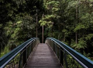 NZ.Whangarei Bridge