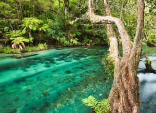 NZ.Tarawera River